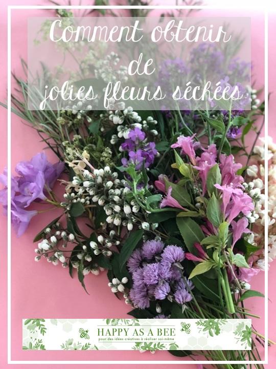 fleurs séchées2